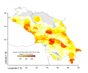 Density of spider records in the Caucasus Ecoregion; gray: no records within 25-km-radius; white: 1 record; darkest red: 308 records.
